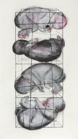 Original artwork by Barbara Downs, Concept Drawing for Baby Cage (II), Chalk and Charcoal on Paper