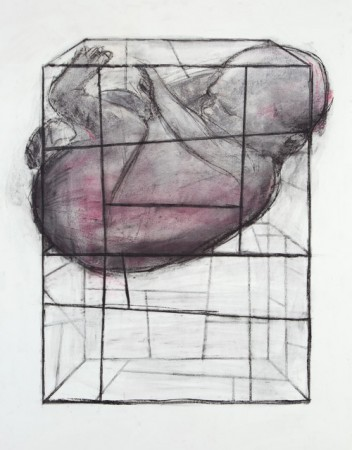 Original artwork by Barbara Downs, Concept Drawing for Baby Cage (I), Chalk and Charcoal on Paper