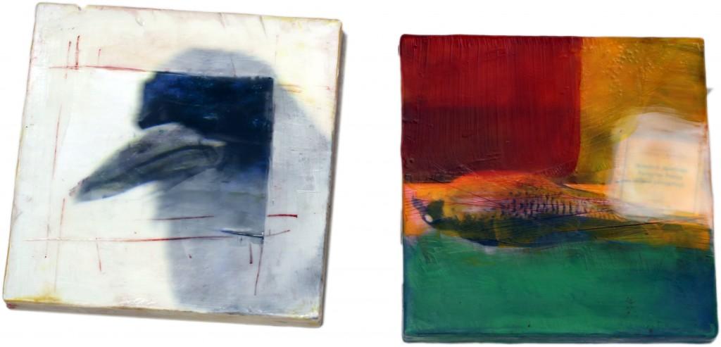 Original artwork by Barbara Downs, The Daily Bird, Encaustic/Oil/Photo on Panel